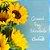 Girassol Plantado - Imagem 3