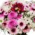 Delicado vasinho com Flores do Campo - Imagem 2