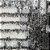 Tapete Sala / Quarto / Siwa 0001 - Imagem 3