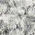 Coleção Tanger 802 - Imagem 1