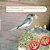 Paternidade ou Maternidade de Aves - Imagem 1