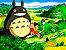Cortina Tonari no Totoro - Imagem 1