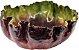 Bowl folha vitória régia P coleus escura  - Imagem 2