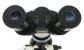 Microscópio Biológico Binocular aumento até 1600X Com Bateria Biofocus - Imagem 3