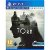 Torn PS VR – PS4 - Imagem 1