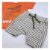 Conjunto Roupa de Bebê Infantil Calor Camiseta Bermuda Laranja Dino - Imagem 5
