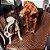 Capa Proteção de Banco de Carro DeLuxe Mr. Puppy - Imagem 3