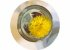 Flor de crisântemo - Imagem 1