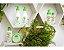 Sabonete Liquido Infantil Lava Tudinho Bioclub - BIO00036 - Imagem 3