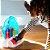 PIANO INFANTIL POP E GLOW 2X1 - BABY EINSTEIN - 10804 - Imagem 5