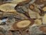 Cipo Suma  - BELEZA DA TERRA - Imagem 1