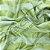 Jacquard Corttex 2,80 de largura - 7740 Verde Listrado 050 - Imagem 1