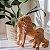 Leão Família Nuca 20cm - Imagem 3