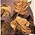 Vaso Costela de Adão Terracota M - Imagem 2