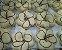 Pão de Mel Coberto com Chocolate Branco   - Imagem 1