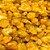 Goldenberry amarelo 100g - Imagem 1