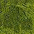 Chlorella 100g - Imagem 2