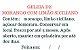 Geleia de Morango e Limão Siciliano - Imagem 4