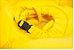 Boia de Pisicna Octopus Amrela - Imagem 3
