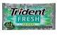 CHICLETE TRIDENT 21S 8G HERBAL S ACUCAR - Imagem 1