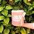 Caixa com Flores Aromatizada - Imagem 1