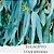 Óleo Essencial de Eucalipto Staigeriana - Imagem 1