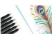 Caneta Ponta Pincel Brush 6 Cores Pastel Faber Castell - Imagem 2