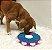 Tabuleiro Interativo Nina Ottosson Dog Twister - Imagem 5