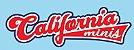 California Toys - California Minis/Welly Collection (Parte 2) - 1/64 - Imagem 1
