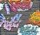 Papel de Parede Freestyle L17901 - 0,53cm x 10m - Imagem 1