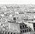 Papel de Parede Picasso L33709 - 0,53cm x 10m - Imagem 1