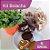 Kit Bolacha 300g - 3 sabores (rústica, com chocolate e com glacê) - Imagem 1