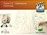 Curso 2. Vídeo Aula 02 - Caricaturas Femininas (entrega via Download) - Imagem 1