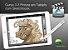 Curso 3. Aula 3 - Pintura em Tablet com Sketchbook (entrega via Download) - Imagem 1