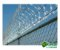 Concertina Simples 10m x 30cm - Imagem 5