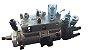 Bomba Injetora Delphi TS 120 - Substituição - Imagem 1