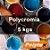 Polycromia - 5 kgs - Imagem 1