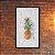 Quadro Decorativo Abacaxi Marmorizado - Imagem 1