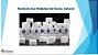 COMPOSTO PARA DIABETES  350 Mg - 60 Capsulas - Imagem 1