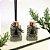 Difusor de Aromas Chá Verde e Alecrim Dourado  -  Linha Home - Imagem 1