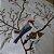 Capa de Almofada Bordada Cardeal - Tecido Algodão Cru  - Imagem 2