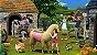 The Sims 4 Vida Campestre PS4 Mídia Digital  - Imagem 3