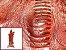 Pele de Canela de Avestruz Exótica - Cor: ref.01 - Classificação: II - Imagem 1