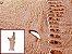 Pele de Canela de Avestruz Exótica - Cor: ref.04 - Classificação: II - Imagem 1