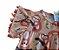 Vestido Infantil Preguiçinha - Abrange - Imagem 8