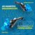 Par De Manetes Inquebrável Husqvarna Te300 Retrátil Nanotech - Imagem 2
