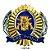 Distintivo de Boina PM SP - Imagem 1