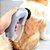 Aspirador de Pelos para Pets - Imagem 4