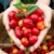 Acerola Okinawa de Frutos Grandes - Muda Clonada - Imagem 1