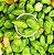Pimenta de Cheiro Lupita - Kit c/ 20 Sementes - Imagem 1